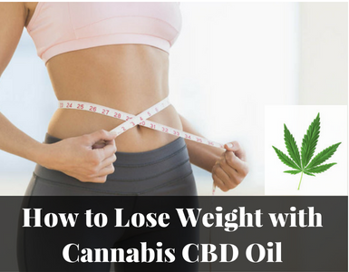 How to Lose Weight with Cannabis CBD Oil