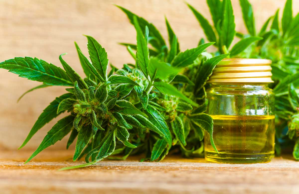 Buy Cannabis Oil Online Safely