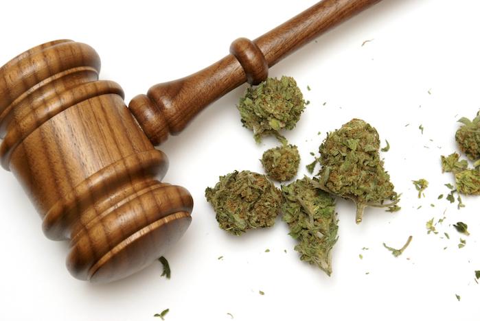 Florida's Chief of Medical Marijuana Resigns amid Controversy