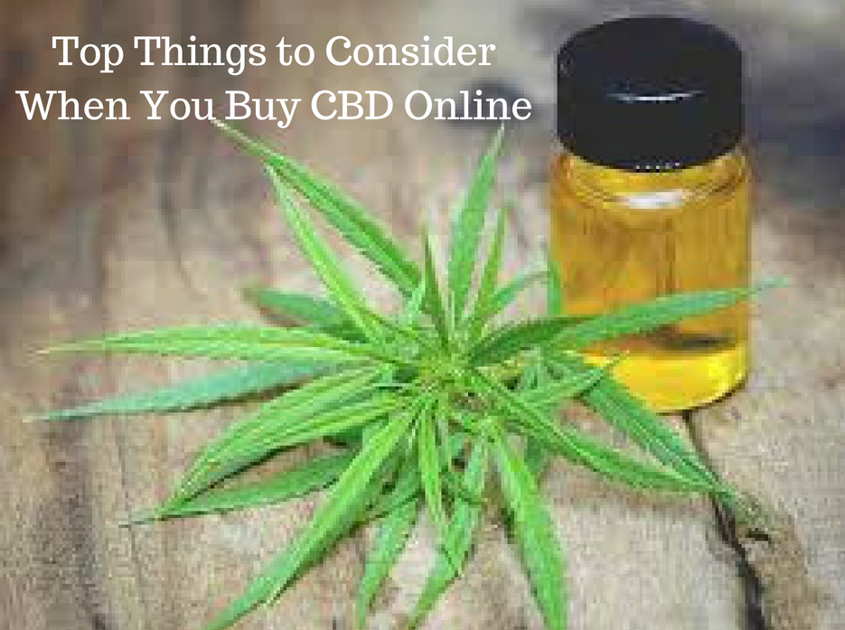 Top Things to Consider When You Buy CBD Online