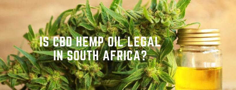 CBD Hemp Oil Legal in South Africa?