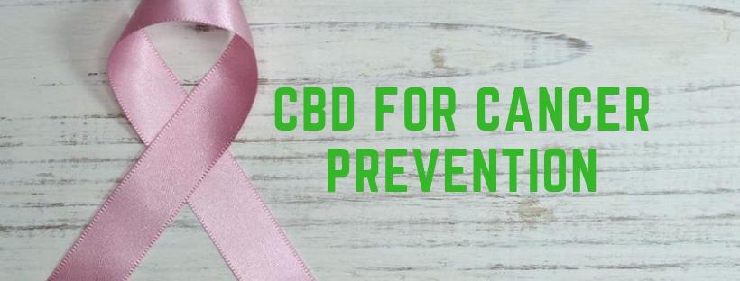 CBD for Cancer Prevention