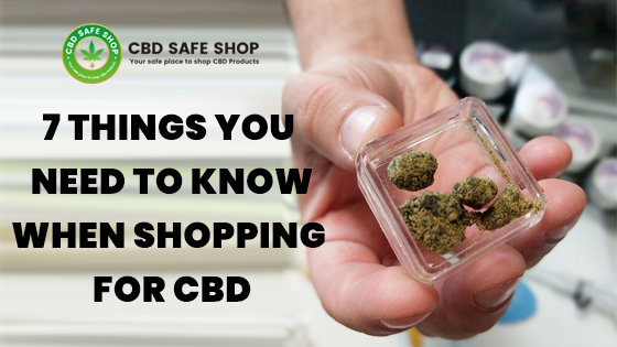 7 Things to Know When Shopping for CBD Oil