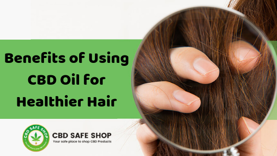 Benefits of Using CBD Oil for Healthier Hair
