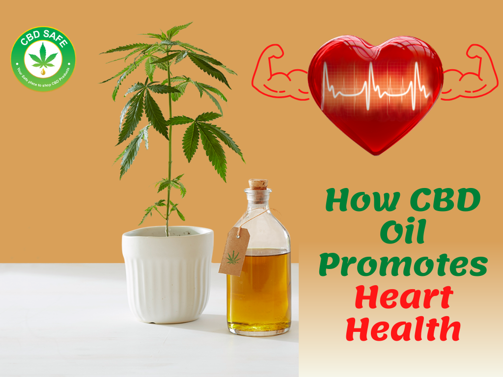 How CBD Oil Promotes Heart Health