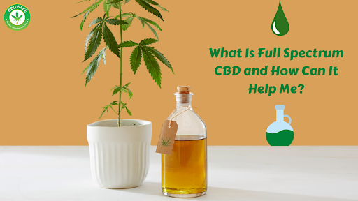 What Is Full Spectrum CBD and How Can It Help Me