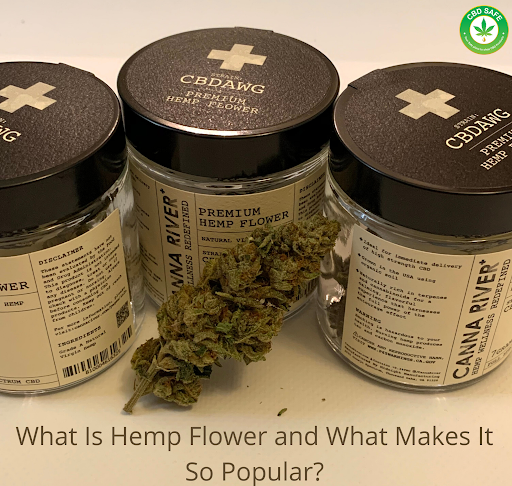 What Is Hemp Flower and What Makes It So Popular?