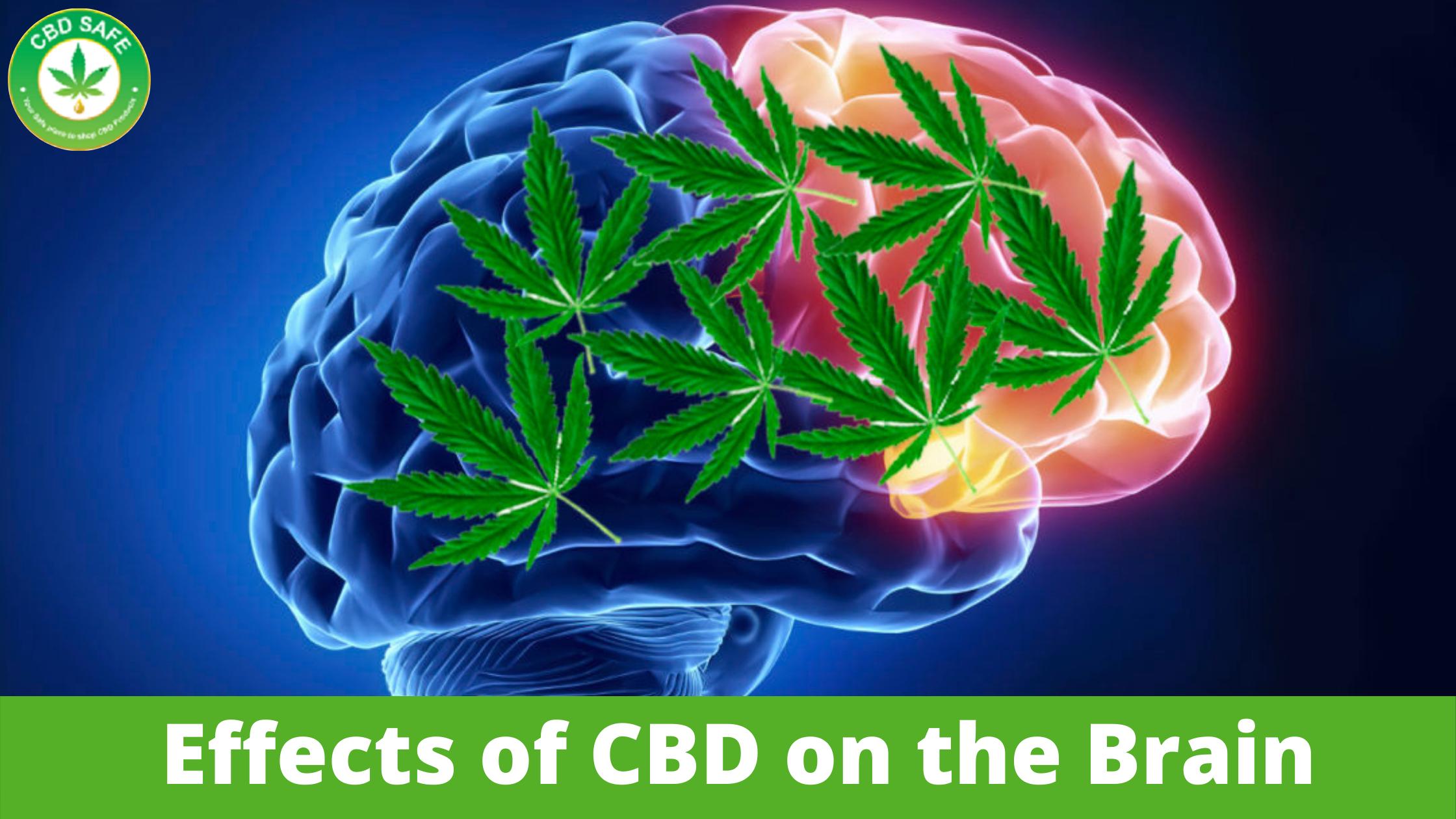 Effects of CBD on the Brain